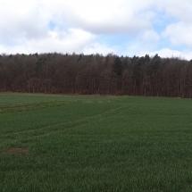 Altenburg-Panorama