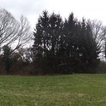 Schuetzenhaus-Panorama